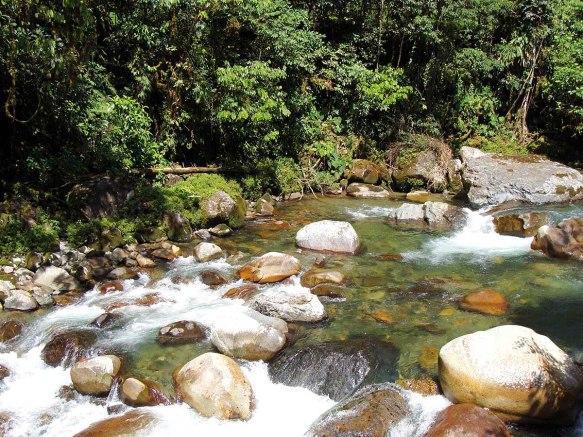 Crystalline waters of the Rio Zunac. Recalde/EcoMinga.