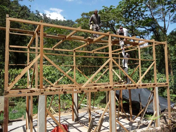 Our research station under construction, with cement lower columns. All the wood was milled from trees that had fallen naturally in the forest; no trees were cut for this structure.