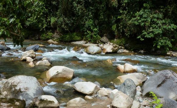 Rio Zunac. Click to enlarge. Photo: Lou Jost/EcoMinga.