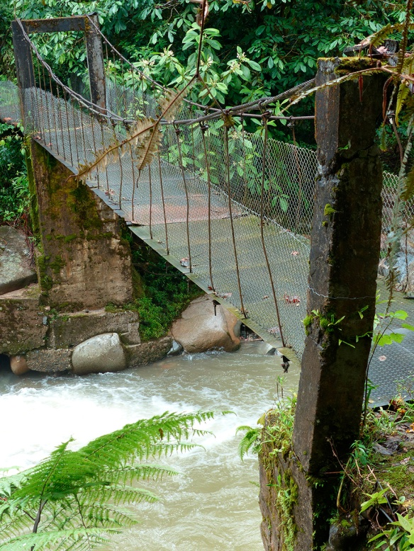 Footbridge over the Rio Zunac. The cement posts were bent in earlier catastrophic flash floods. Photo: Lou Jost/EcoMinga
