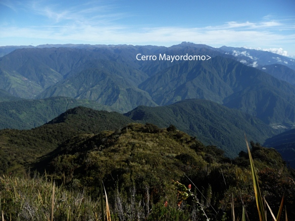 Click to enlarge. Cerro Mayordomo, at the north end of our forest corridor, as seen from the highest point on the other side of the corridor, Cerro Candelaria 13km away.