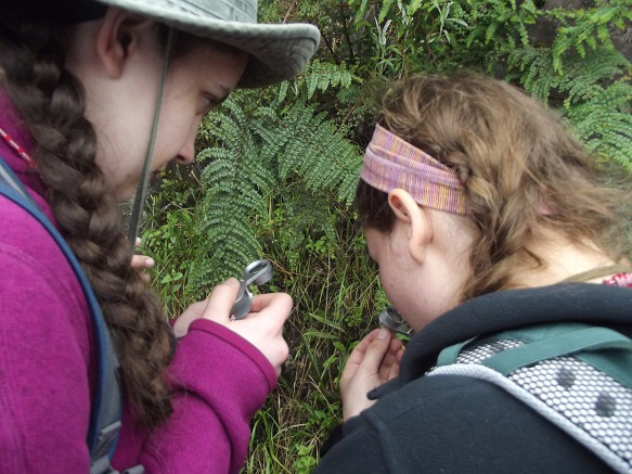 Students using their loupes to examine plant details. Photo by Lawrenceville School student Meg.